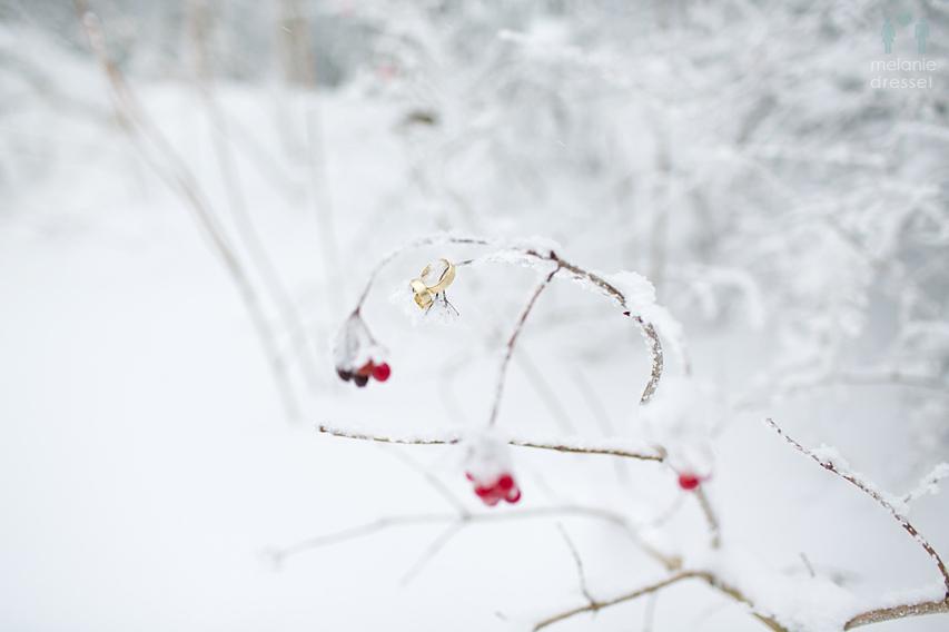 Winterhochzeit Masserberg