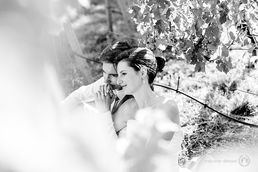 Hochzeitsreportage Weinberg
