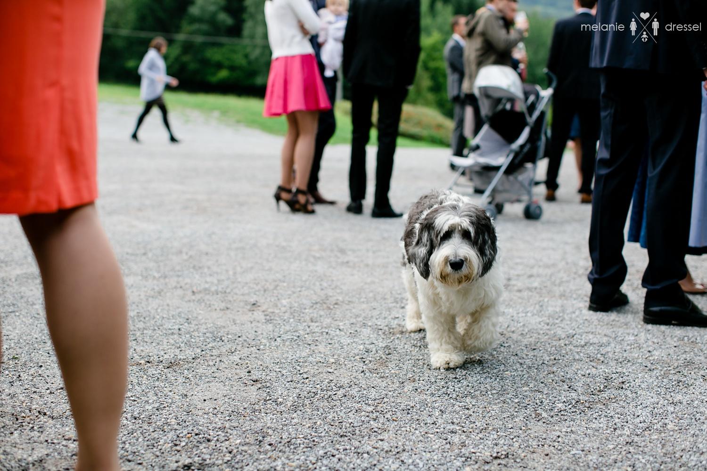 Hochzeit Berghof Buchet
